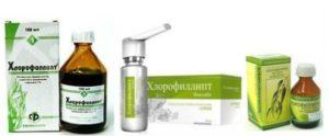 ингаляции с Хлорофиллиптом